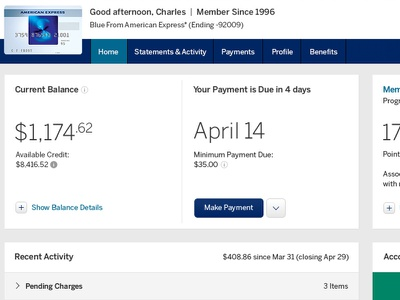 American Express Account Summary american express financial graphing credit
