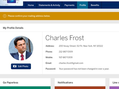 American Express Profile american express financial profile credit