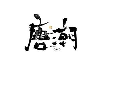 唐潮 handwriting handwriting font logo typography font design