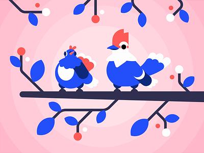 CAW tree bird pigeon blue jay birds