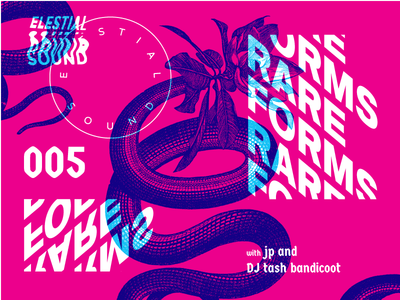 Rare Forms 005 snake bands poster elestial sound