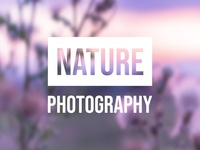 When nature turn purple - Nature Photography