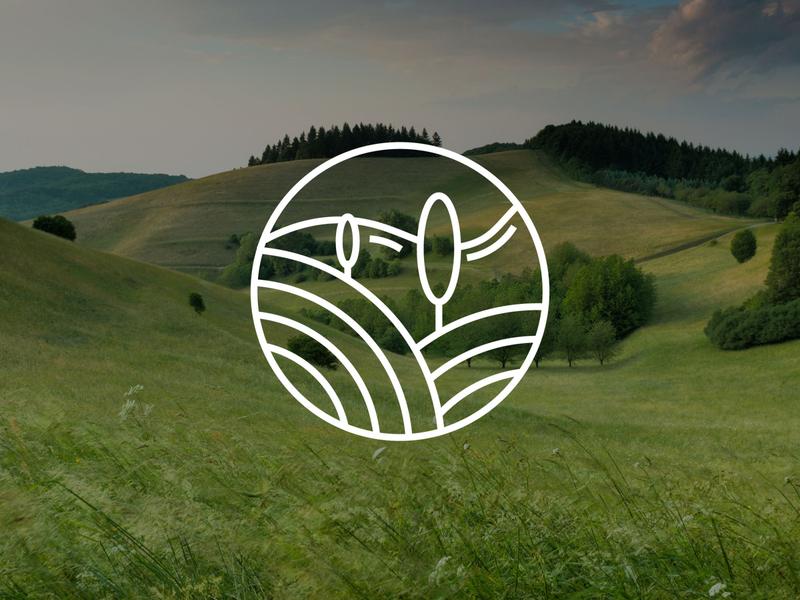 Logoinspiration branding illustration icon vector graphicdesign photography logo design