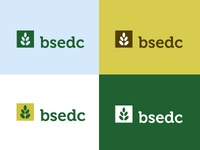 BSEDC logo color study