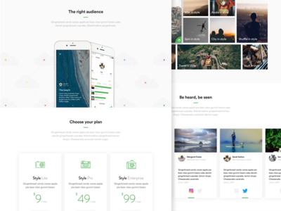 Style: Landing page