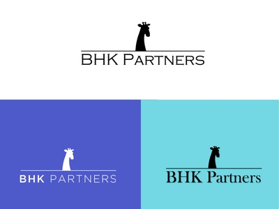 BHK branding business logo cleaner logo illustration new logo design typography unique logo brand identity logodesign logo