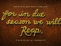 Galatians 6 9 3840x2160