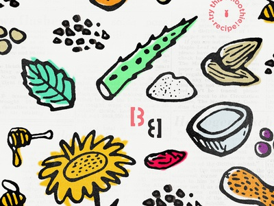 BB Ingredients branding illustration flavors goji cacao almond peanut coconut mint aloe sunflower ingredients
