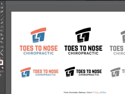 Logo for Toes to Nose Chiropractic