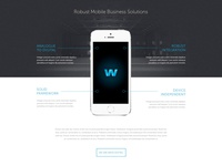 Agency Website Concept