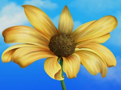 the yellow flower realistic digital art yellow colorfulness digital illustration apple pencil procreate flower draw