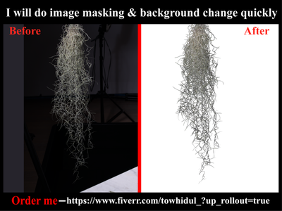 I will do Image/photo masking & background removal services others retouching clipping path service e-comerce background removal changing photoediting background remove transpernt masking