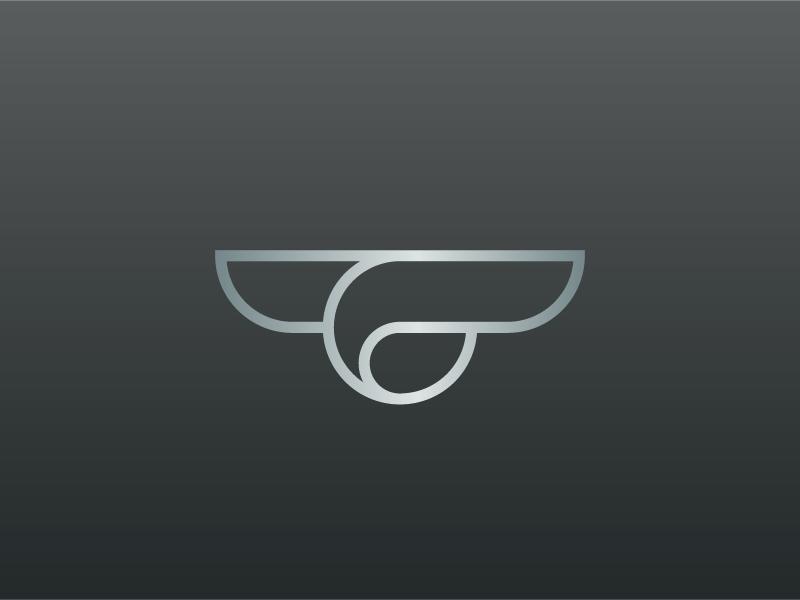 Zen Flying yin yang zen aviation airline private jet rejected logomark logo