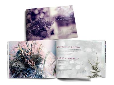 Festive Season 2015 Brochure design christmasbrochure brochure festive season