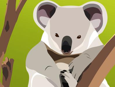 Koala is a very cute Australian animal