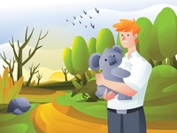 Australia's Koalas Rehab