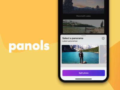 Panols Case Study app iphone colors portfolio panols design case study