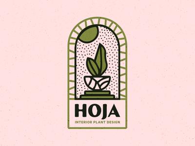 Hoja Branding window plants interior hoja