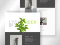 Live Green Web Page Design top designer webdesig minimalist clean uidesign minimal sketch green plant trend landingpage webdesign creative 2020 adobexd uxdesign concept