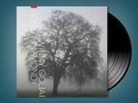 Ross Hammond & Vinny Golia album cover