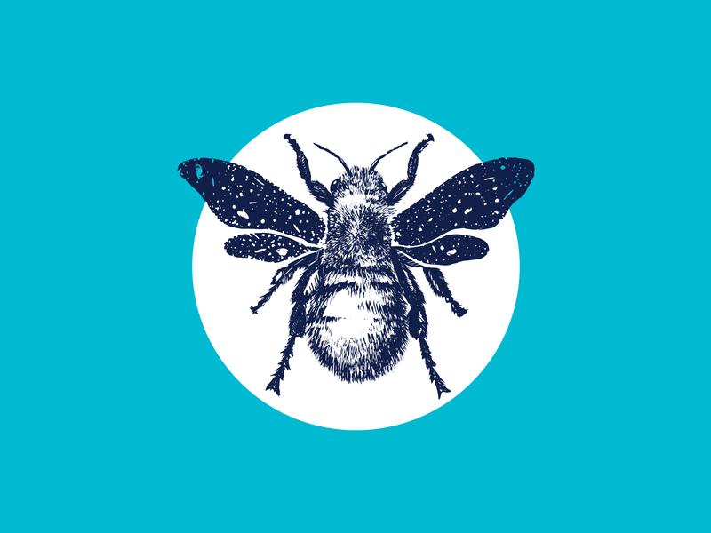 Space Bee icon illustrator logo vector illustration design bran honeybee buzz procrate drawing space pen and ink bee branding
