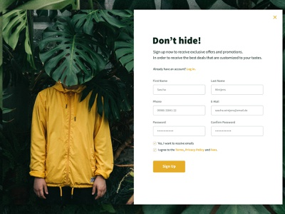 Daily UI: #001 Sign Up popup website ui web design daily ui 001 daily ui ux dailyui login form sign up sign in