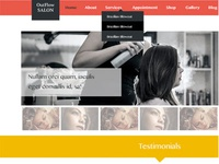 Salon Website Slider