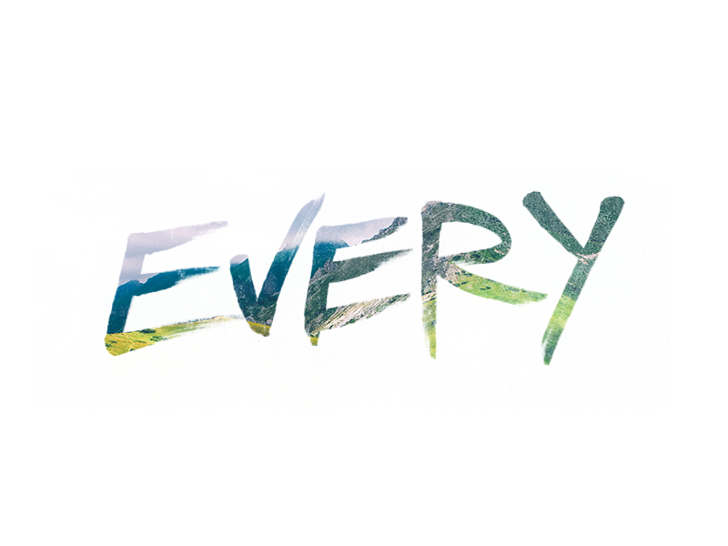 Every every type brush hand lettering hand type