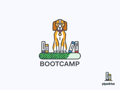 Bootcamp Beagle