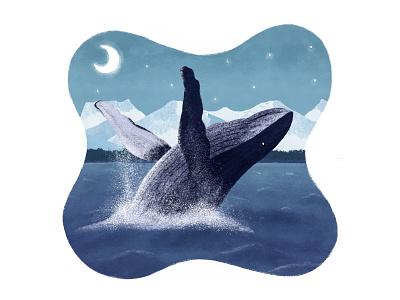 Humpback Whale digital art drawingart art illustration