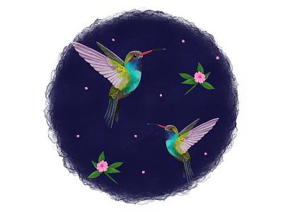 Hummingbird watercolour pencil drawing digital art design art illustration surface pattern pattern design repeat pattern flowers floral bird hummingbird