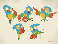 colorish bird designs