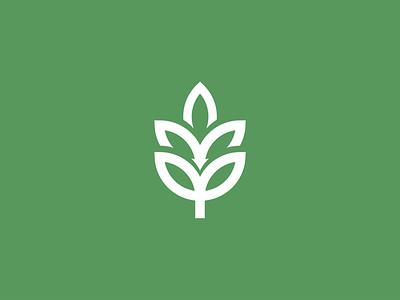 Leaf Mark organic leaf identity icon design mark flat illustration graphic design minimal logo