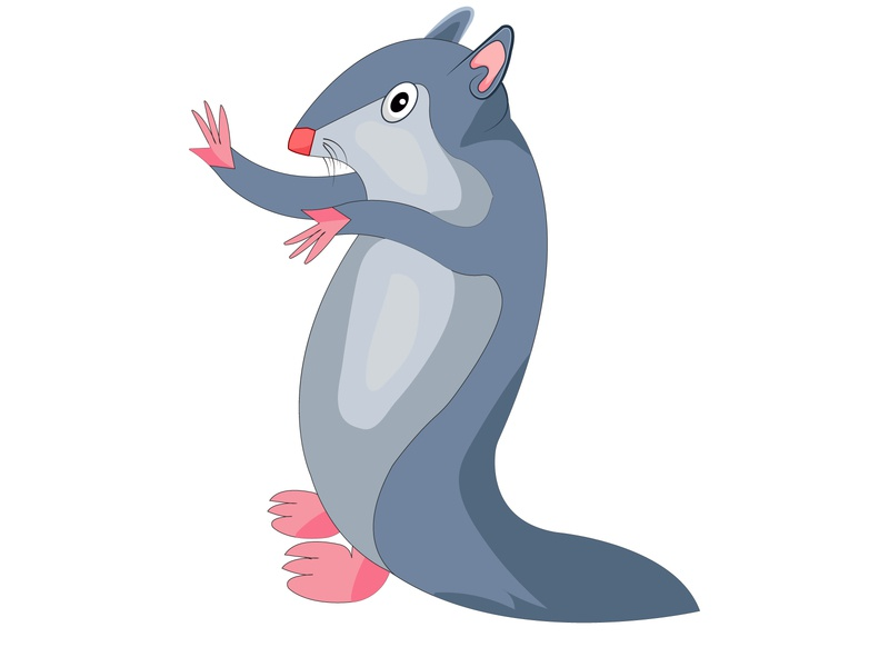 squirrel cartoon vector illustration design. company abstract concept creative branding flat logo business corporate design