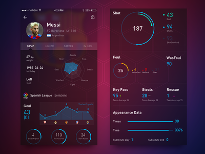 Soccer Player Data Page ui