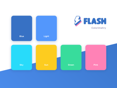 Flash Brand Guidelines