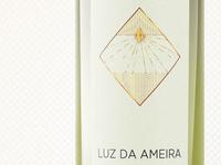 Wine Bottle Concept