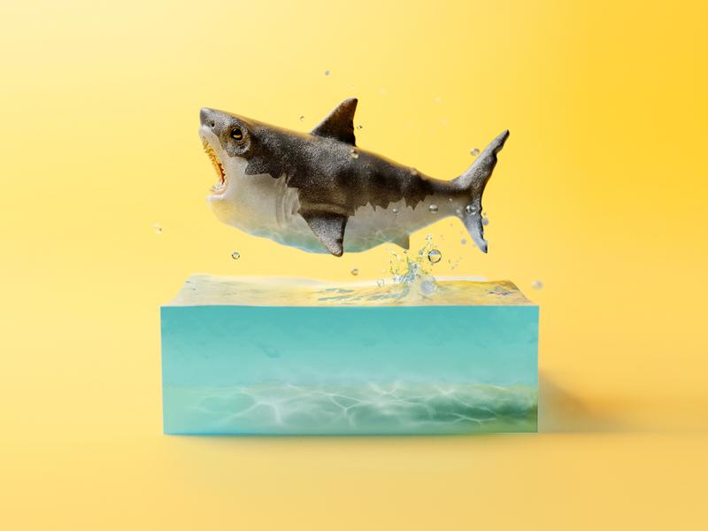 Shark Baby render corona render coronarender shark dribbble zbrush corona design dof max 3dmax cg illustration 3d