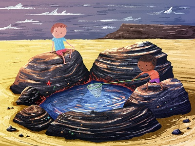 Rock Pool rock kidlitart exploring sea beach picture book kids illustration