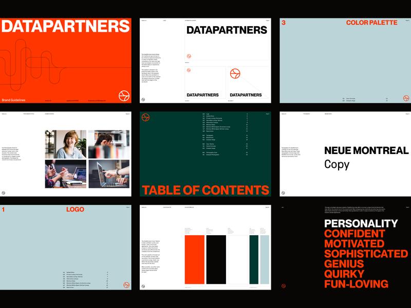 DataPartners Brand Guidelines identity branding agency logo branding symbol agency visual identity system brand strategy