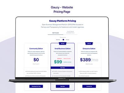 Gauzy Platform - Website - UX/UI Design & Prototype design ui ui design uidesign pricing plans pricing table package design pricing pricing page