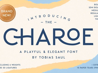 Charoe Typeface & Extras serif display font display font typography ux vector logo ui 3d illustration graphic design design branding