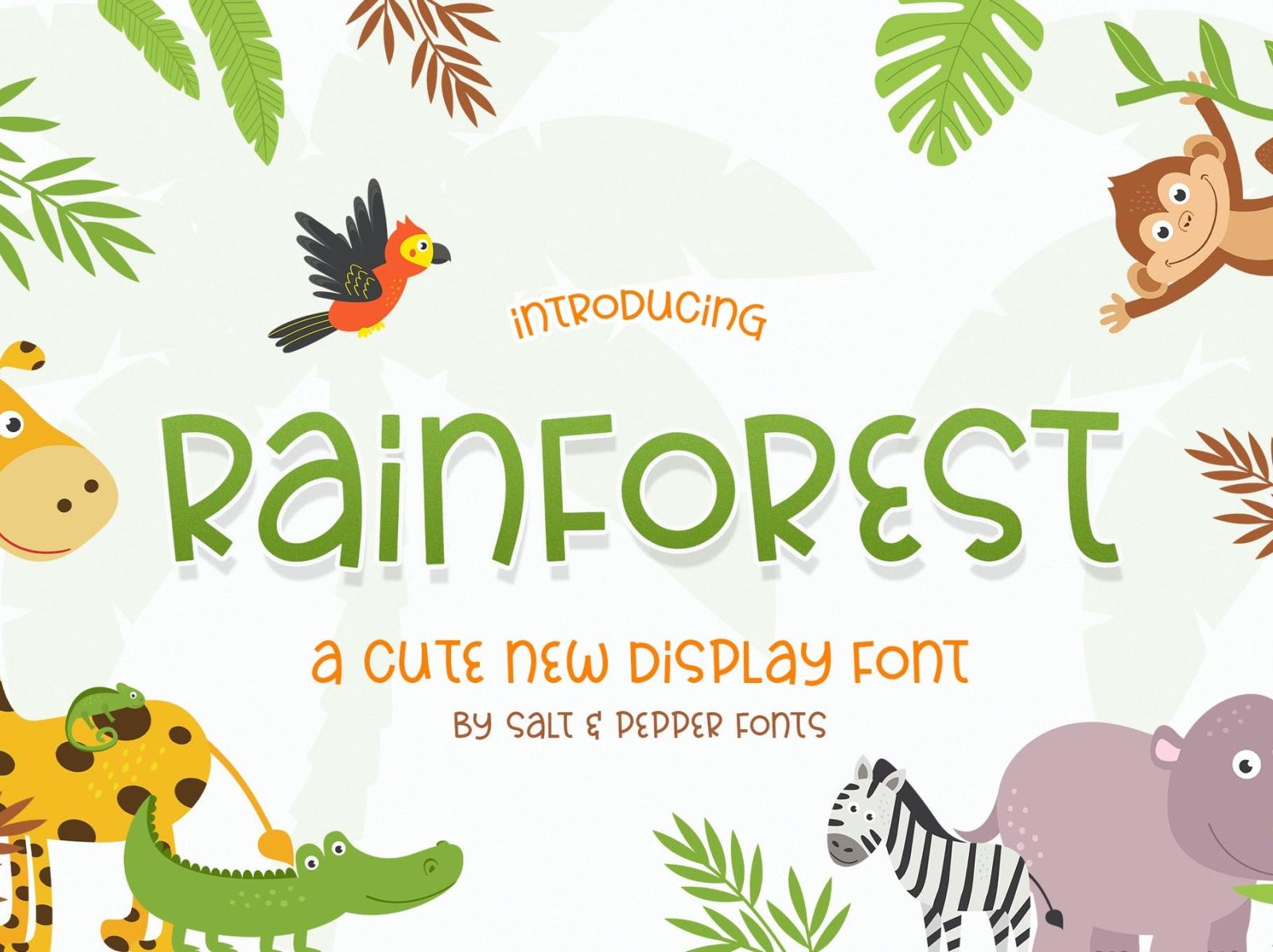 Rainforest Font display font font ux typography vector ui 3d logo illustration graphic design design branding
