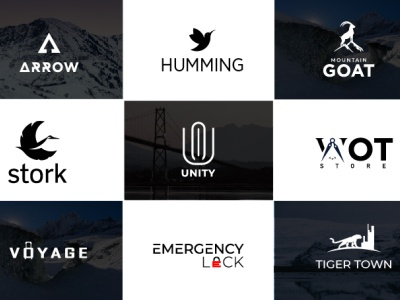 i will do business logo design   minimal luxury brand in 24hr luxary logo flat design logo business professional and modern logo illustration creative and professional  logo branding