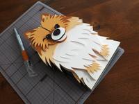 Pomeranian Pet Portrait