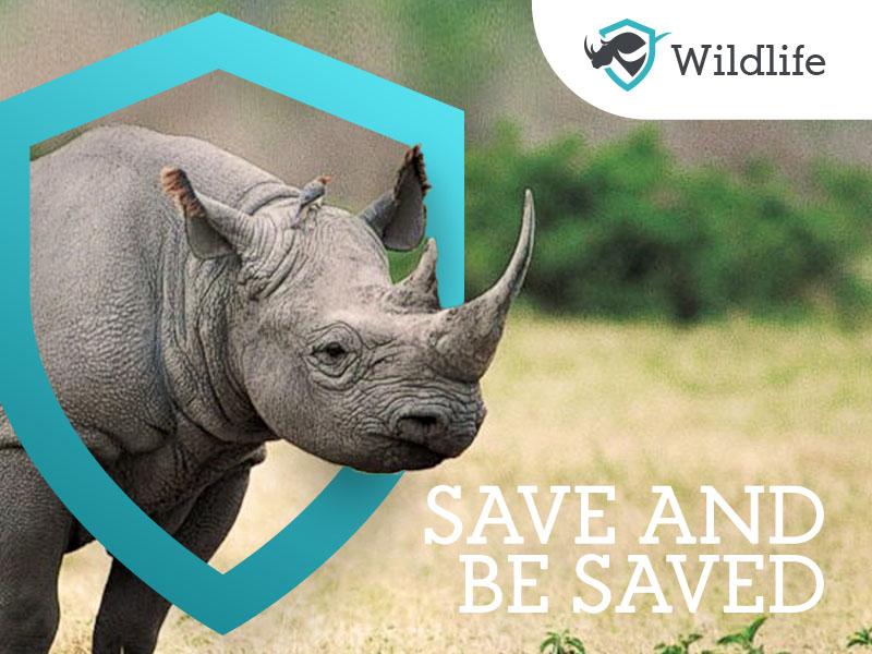 #4 Wildlife - ad concept design