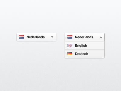 UI — Language Switch ui light language switch select user interface grey