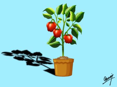 Capsicum ilustration background tree capsicum top