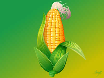 Corn vegetable ilustration background tree corn