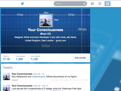 Twitter Profile Design
